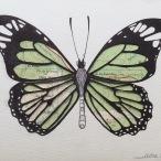 Technique: Illustration, collage. Papillon collé sur une carte